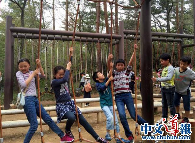 同源中文学校森林公园踏青游